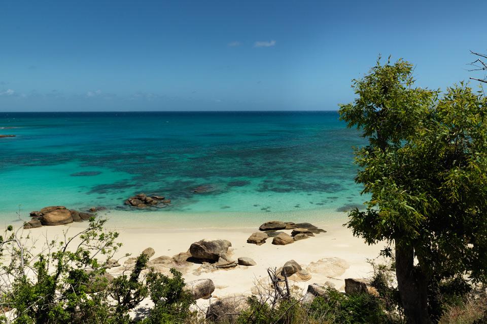 lizard island beach australia